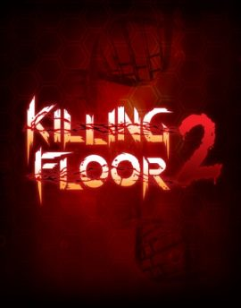 Killing Floor 2 cd key