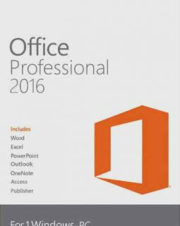MS Professional Plus 2016 Cd Key